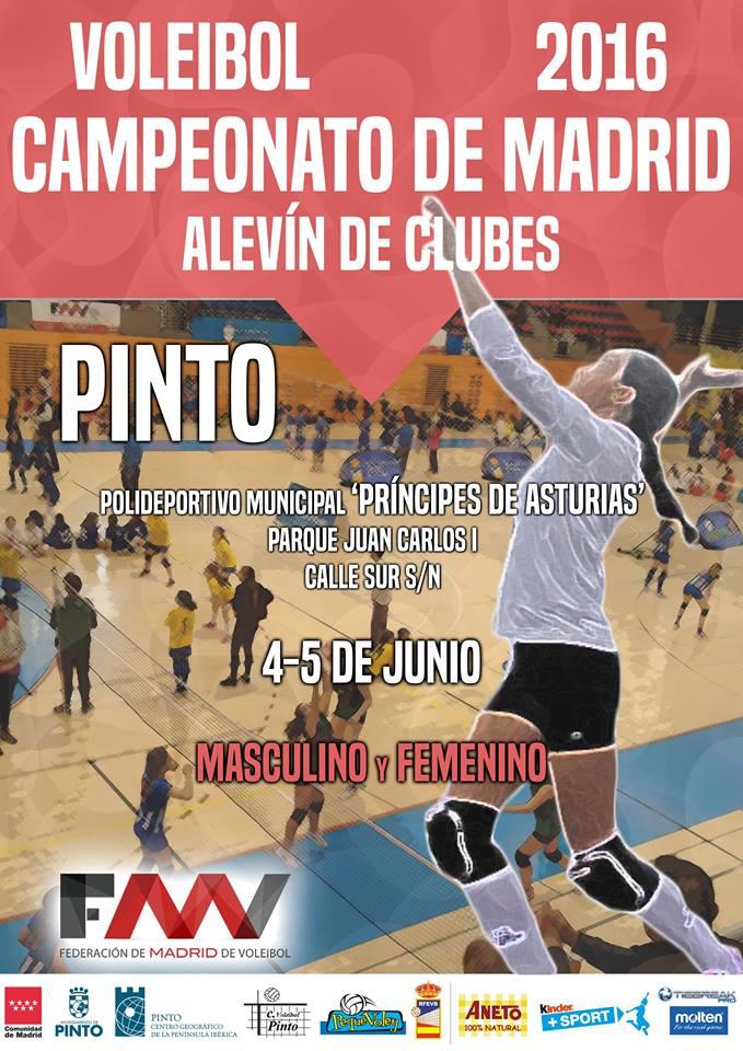 CampeonatoAlevin2016Cartel
